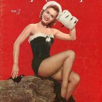 playboy pinup cover